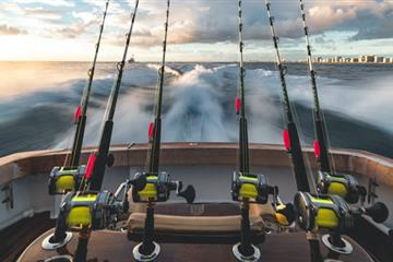 articles - the best location to go sport fishing in america and europe