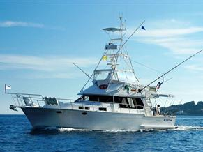 Angel Marine 52 Sportfisher