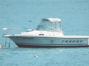 Bayliner Trophy