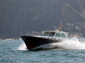 Dale Motor Yachts Classic 45