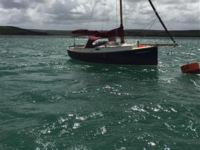 Cornish Crabber Shrimper 21